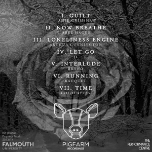 Pigfarm Recordings - Dark Sound - Dark Sound Back