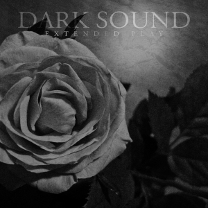 Pigfarm Recordings - Dark Sound - Dark Sound