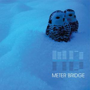 MeterBridge