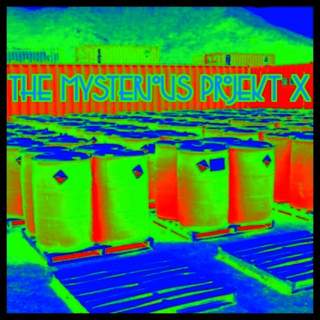 The Mysterious ProjektX